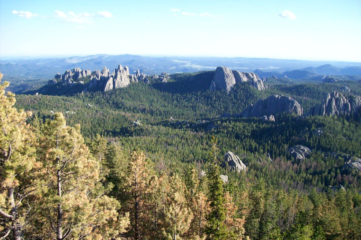 how tall is harney peak