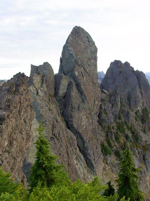 Mt. Cruiser