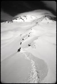 Shasta in Black and White