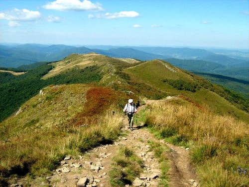 Mount Bukowe Berdo – on way to the summit – 1313 m