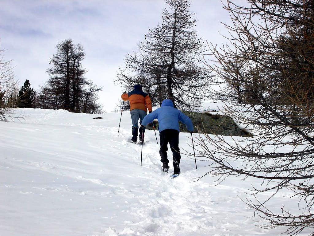 Monte Paglietta