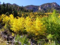 Autumn colors in Mazie Canyon