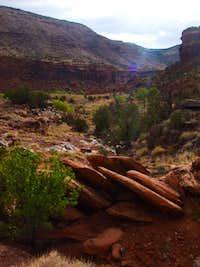 Big Dominguez Canyon