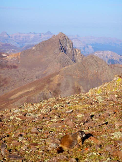 Wetterhorn, Matterhorn and Marmot