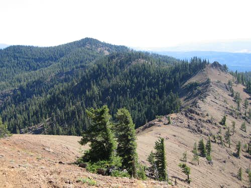 Yellow Hill and the ridge connecting to Elbow Peak