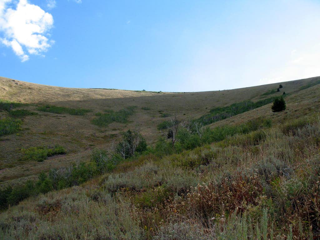 Up the hillside