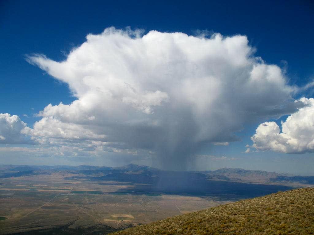The little cloud that