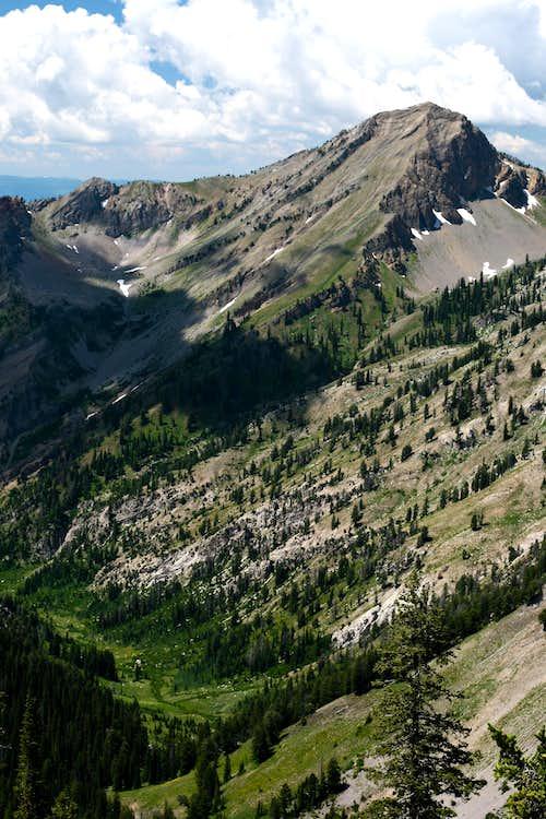 High Canyon Vista