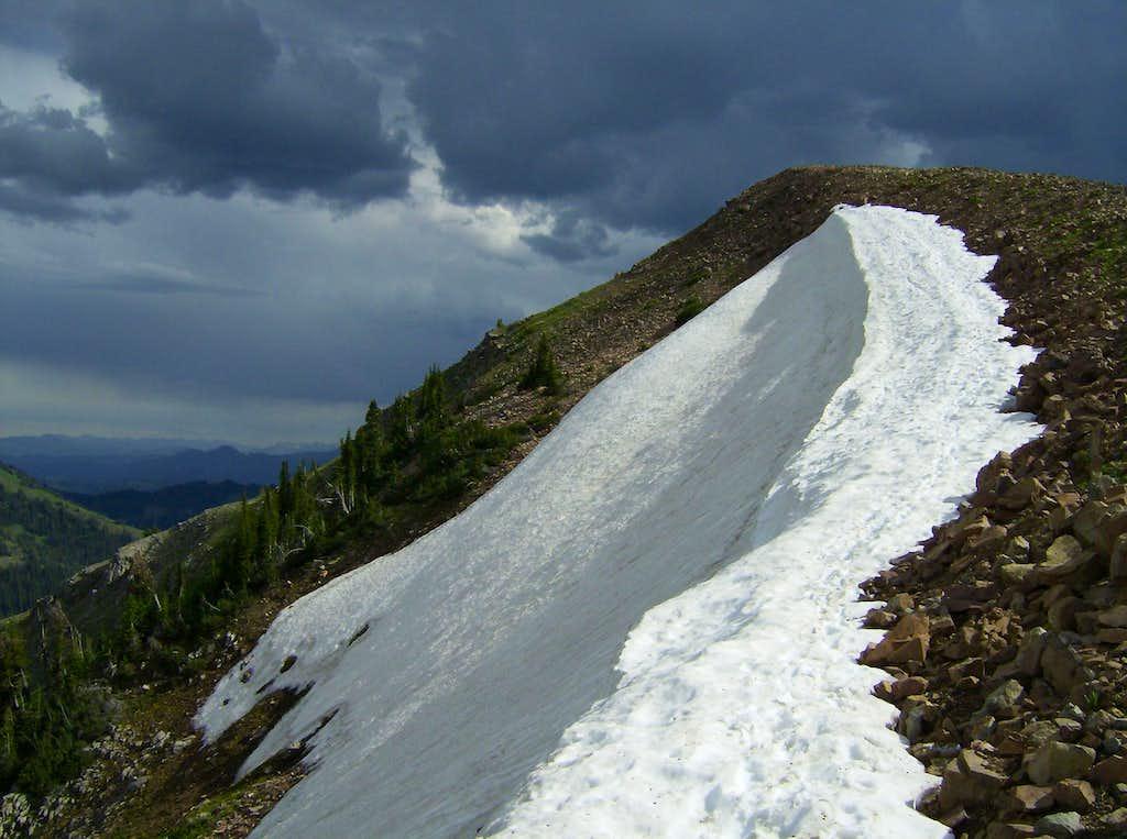Taylor Summit Trail