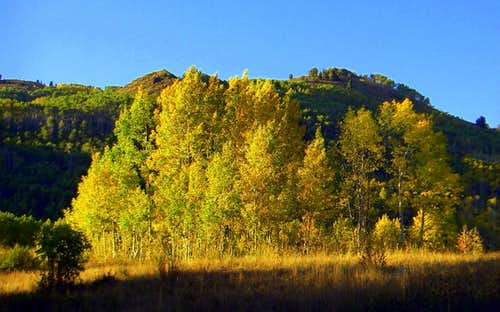 Fall in Willow Fork