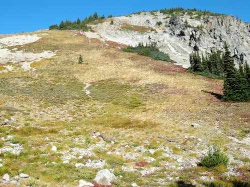 Climbing the Grassy Slope