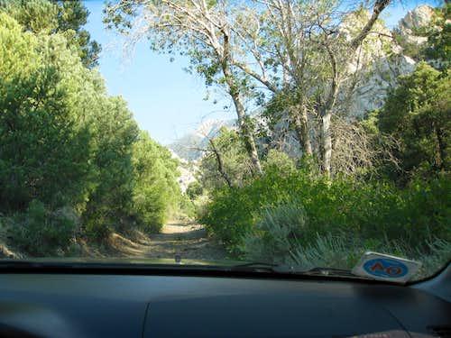 The road narrows