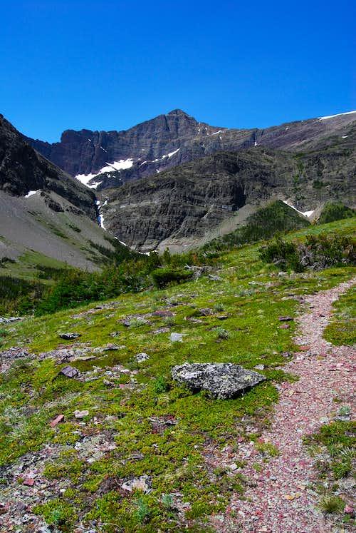 climber's trail above Apikuni Falls