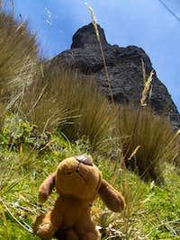 At the base of Cerro Puntas