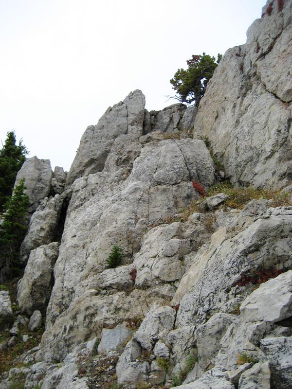 Route to the summit