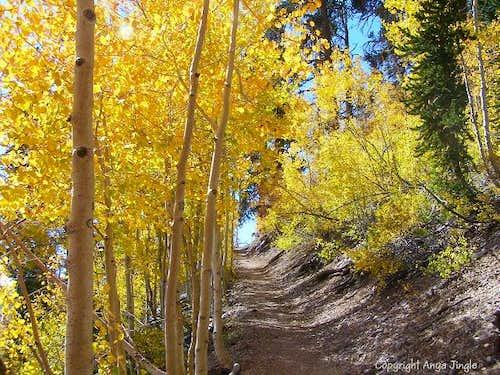 North Loop Trail
