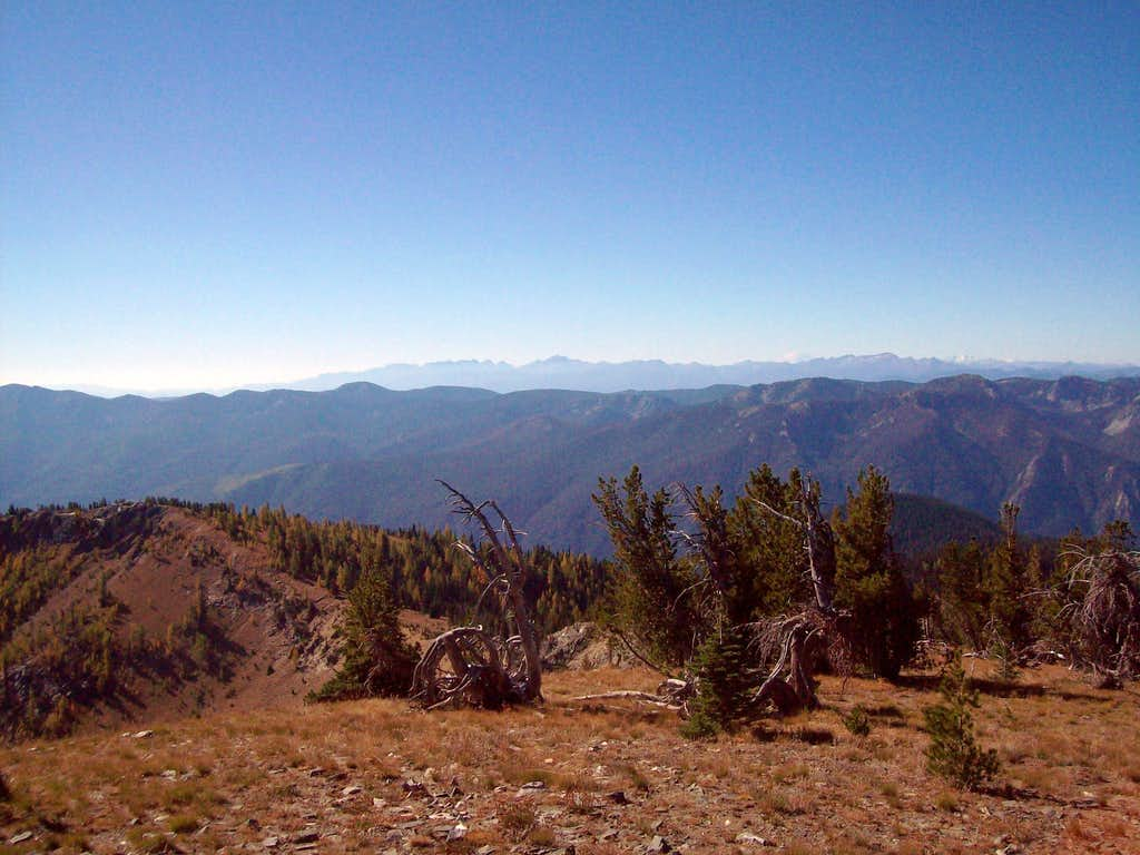 Crow Hill Views