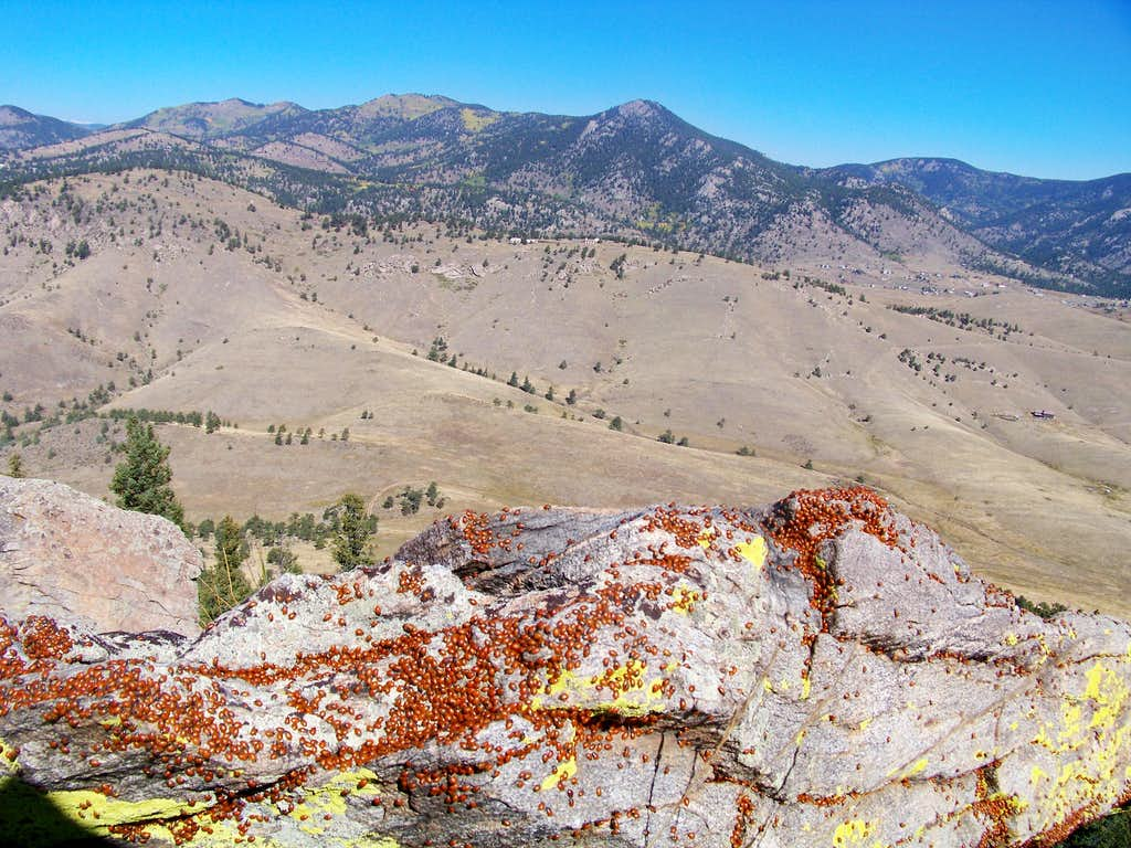 Northwest from the summit with ladybugs
