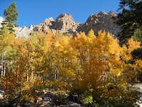 Piute crags and aspens