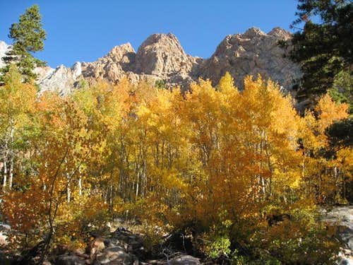 Piute crags and aspens