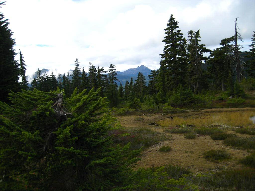 Mt Elma Summit Plateau