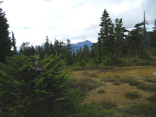 Mt Elma Summit Plateau