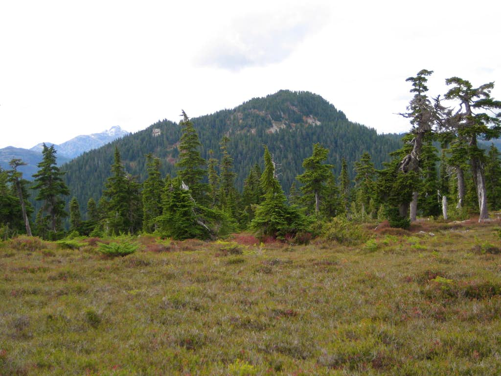 Mt Brooks from Mt Elma