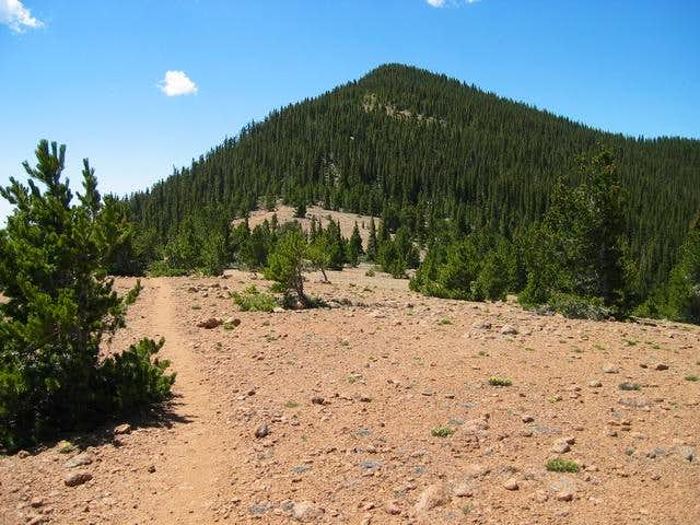 Summit of Mount Rosa from...