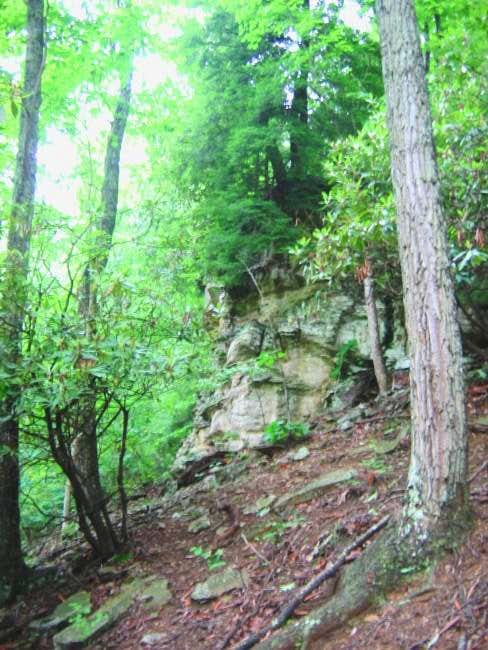 Toward the top the trail...