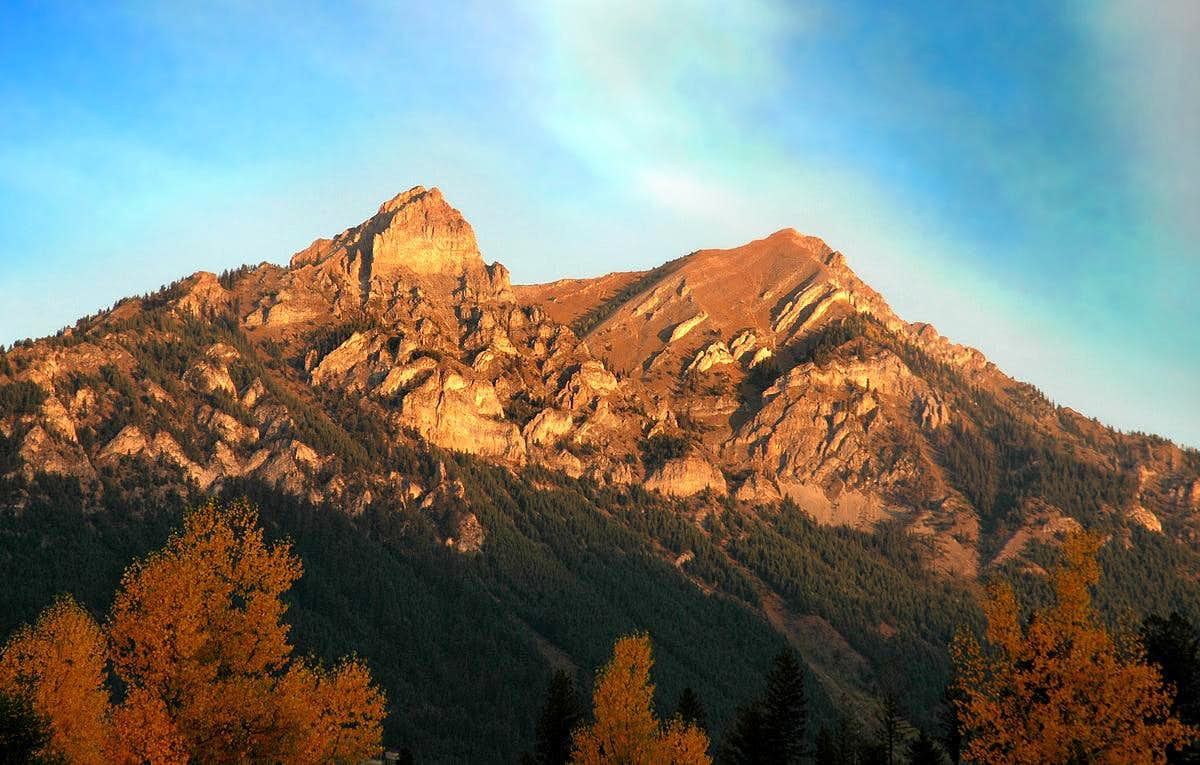 Wapiti Mountain