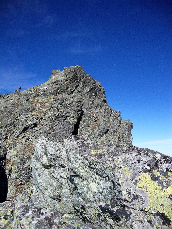 Ganek summit (2459m)