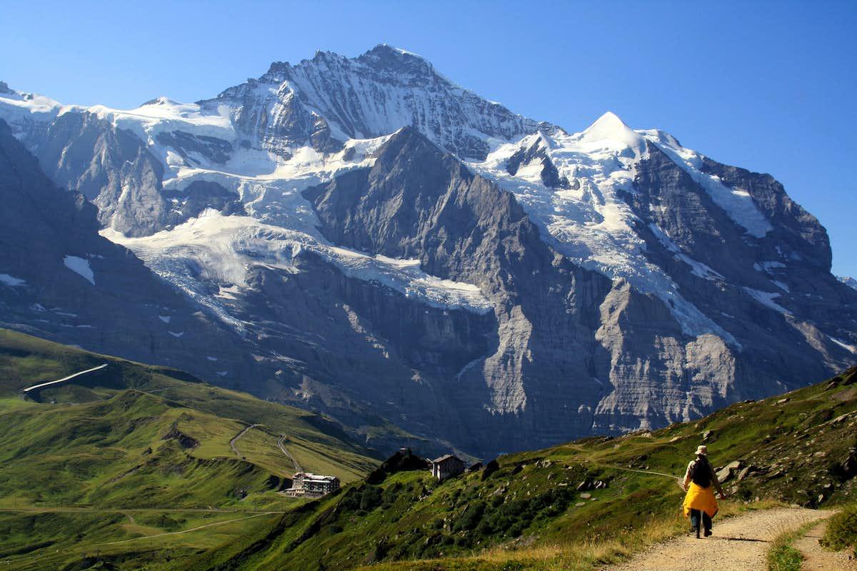 Jungfrau North Face : Photos, Diagrams & Topos : SummitPost