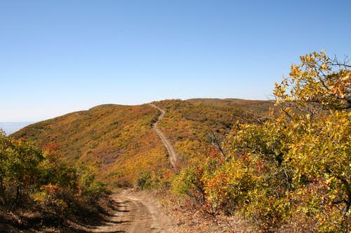 Jumbo Mountain Road