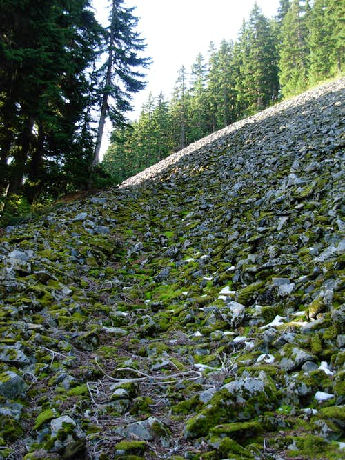Mount Kent Talus Slope