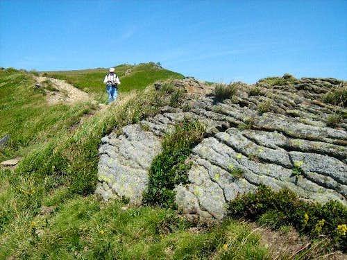 On the ridge of Mount Polonina Carynska