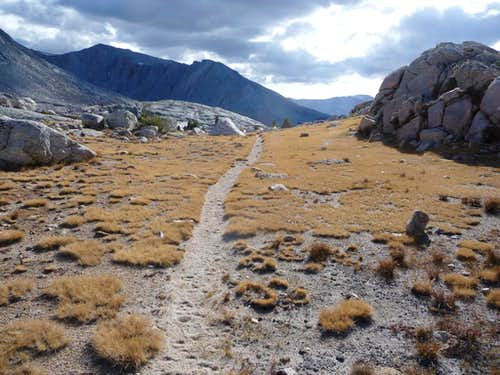 Wallace Creek trail
