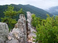 Seneca Ridge Line