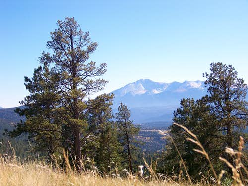 Pikes Peak from grassy meadow