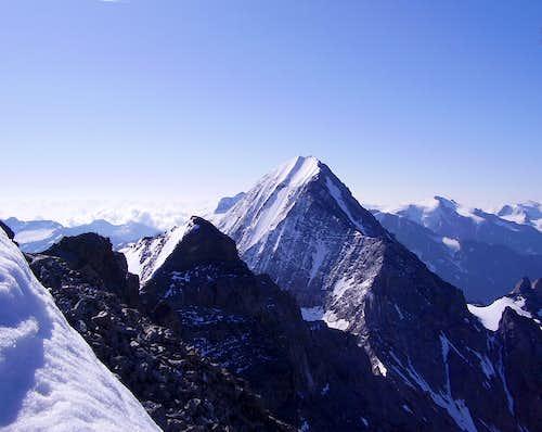 Gran Zebrù North Face