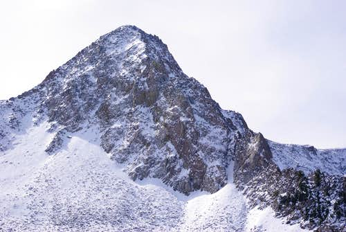 N Ridge, Pfeifferhorn