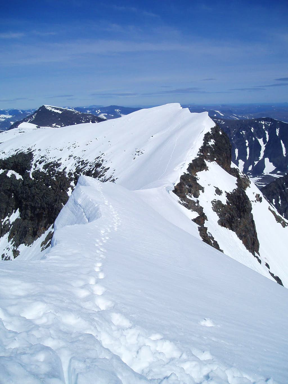 Tricky ridge to north summit