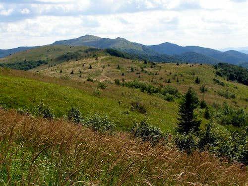 Polonina Bukowska – view towards Mount Kinczyk Bukowski (1251 m)