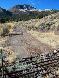 Cattle Guard and Becky Peak