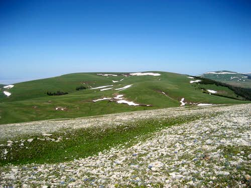 Little Bald Mountain