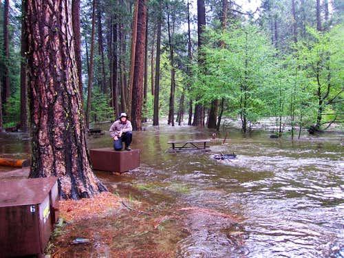 Avoiding the Flood