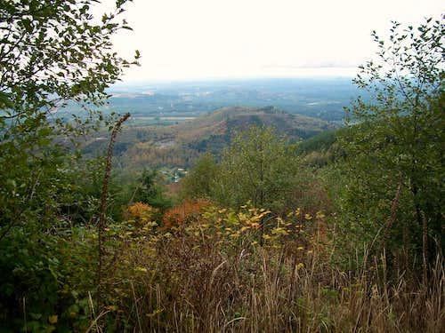 Clearcut views