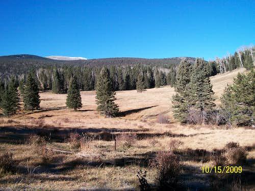 Jicarita sub-summit overlooking meadow