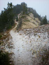 Mt Clifty summit ridge