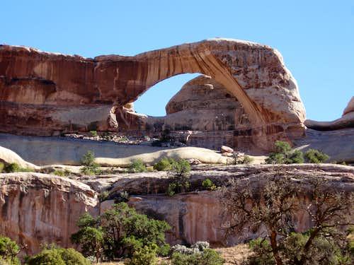 Tibbits Arch