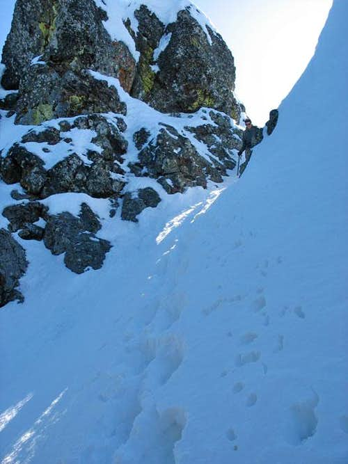 Looking Up Gully